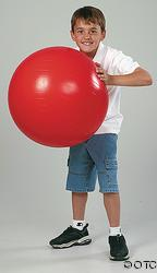 "PVC Gym Ball 25"" $28.95 each"