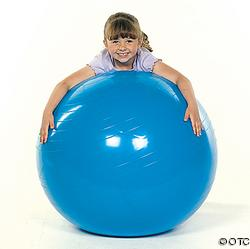 "PVC Gym Ball 40"" $34.95 each"
